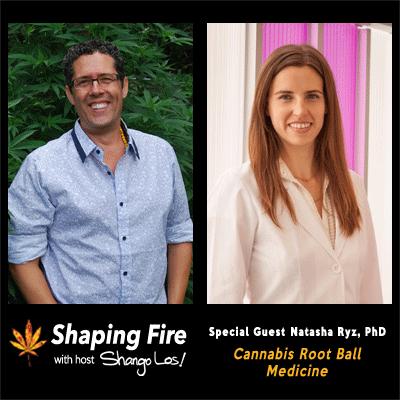 Episode-26---Cannabis-Root-Ball-Medicine-with-guest-Natasha-Ryz,-PhD.png