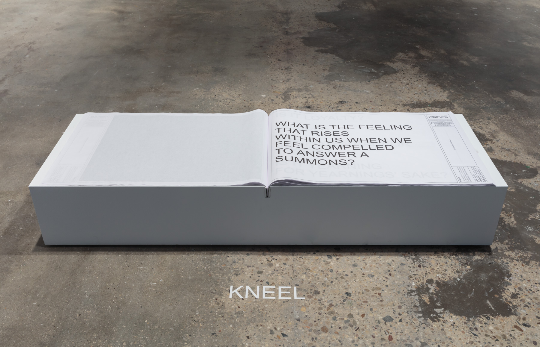 shawné michaelain holloway ,   Scheduled(VariableRatio):secondary-conditioned- immediateReinforcement(s)-handlerSearch1_DrillAndPractice.exe_Companion4.1 , 2019. Interactive book, plinth, and vinyl text. Courtesy of the artist. Photo by Stan Narten.