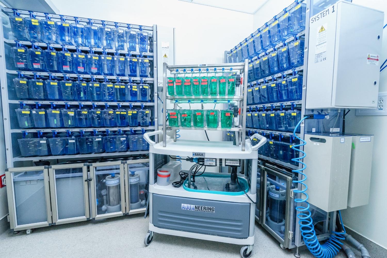Zebrafish facility