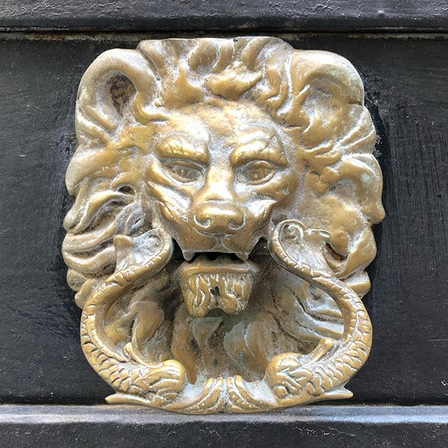 Happy World Lion Day! These are some of the amazing lion door knockers I found on the doors of Venice. And the last one we brought home and hung on our studio door! . . #worldlionday #venice #italy #doorknocker #antiques