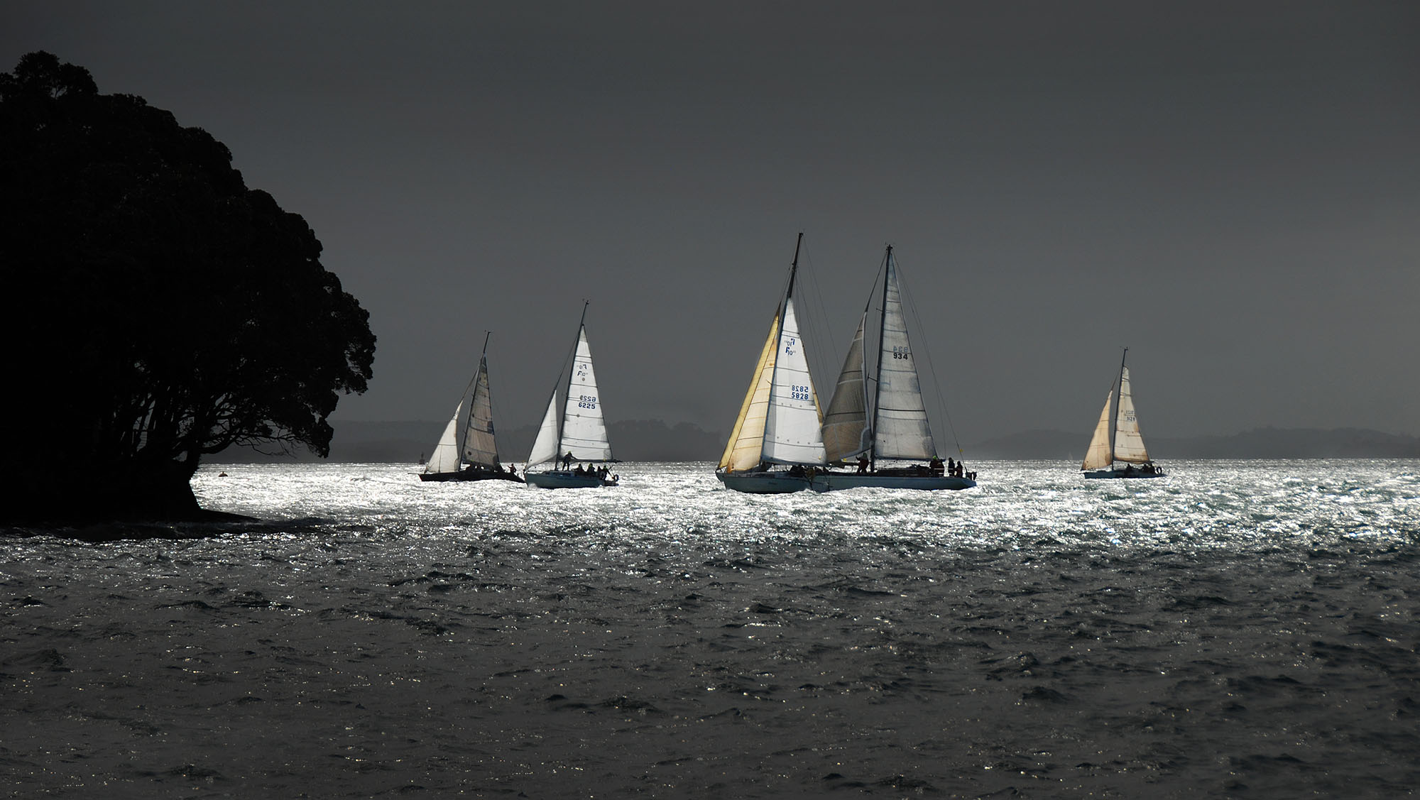 Coastal_4891.jpg