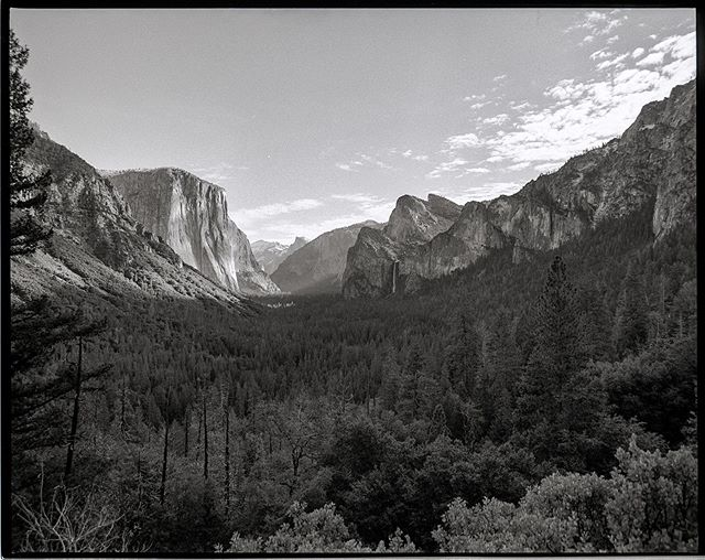 Yosemite Valley one morning last October. Hoping to make it back up there this summer!