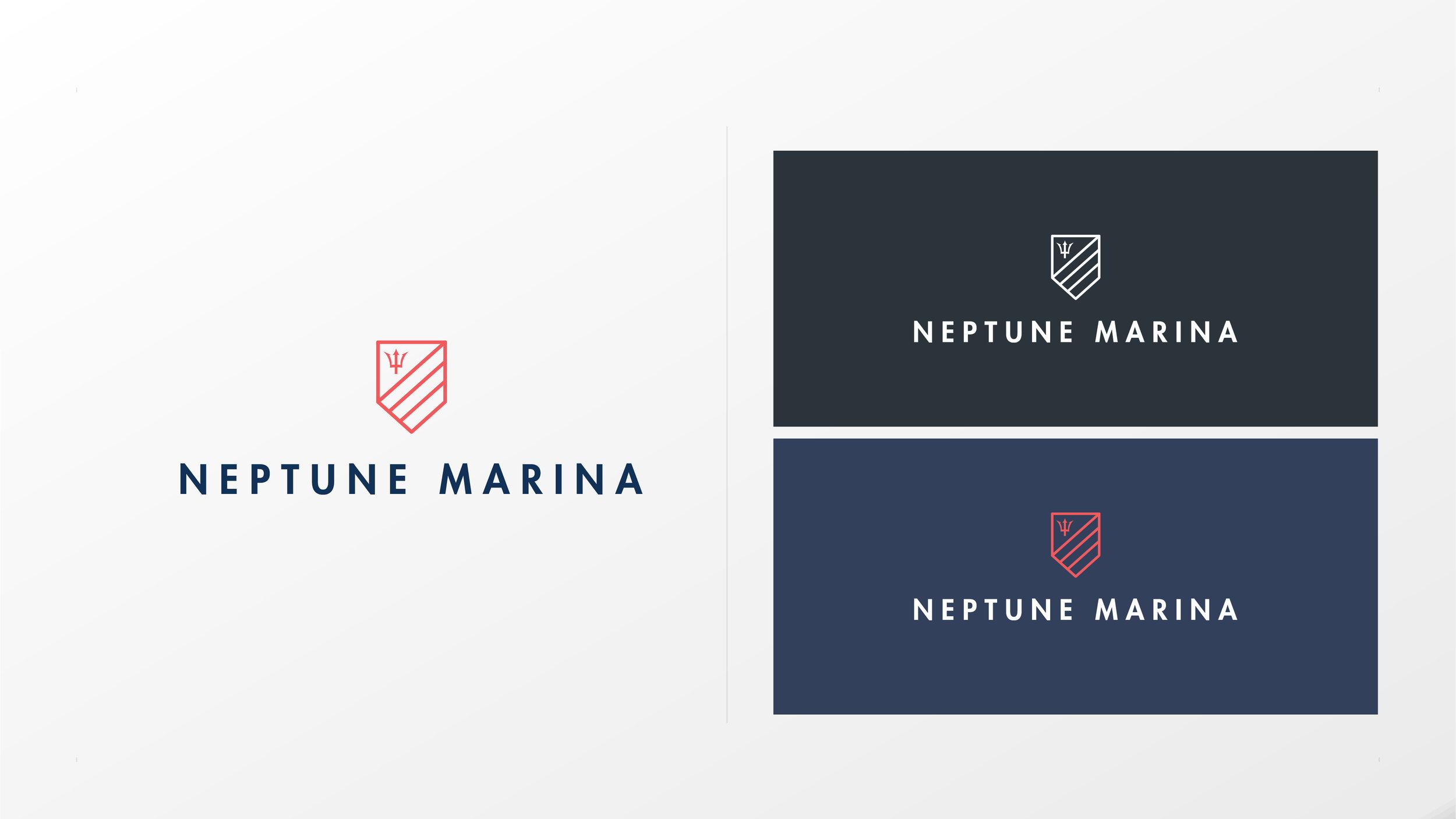NEPTUNE-01.jpg