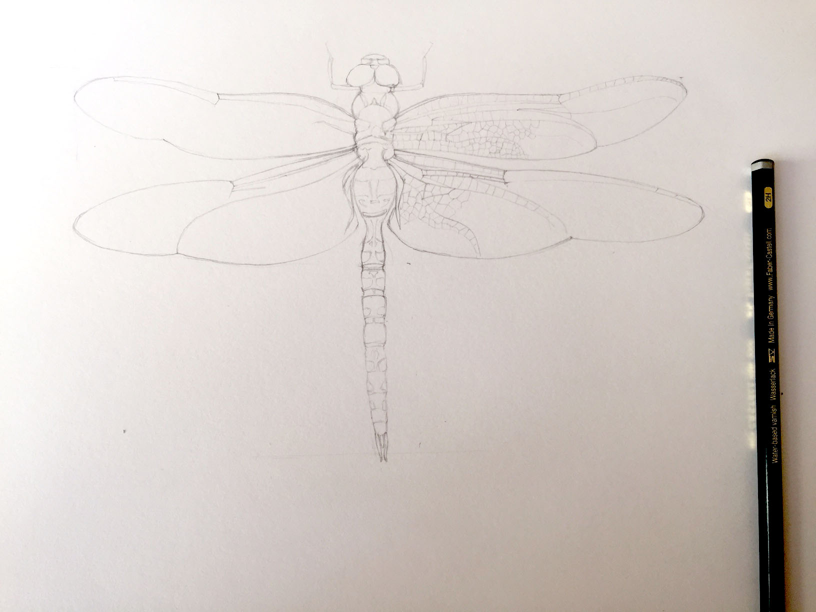 Dragonfly step 01.jpg