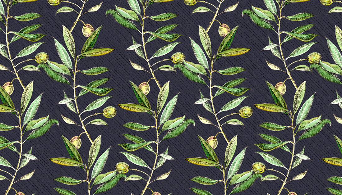 olive branches.jpg