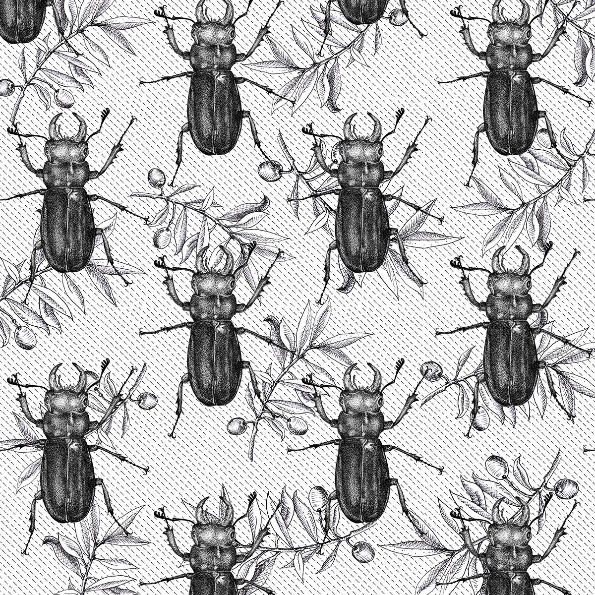 Beetle olive bw 2.jpg