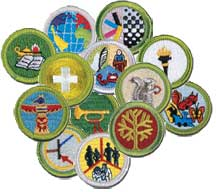 Merit Badge Counselor Training - Learn the proper way to counsel a merit badge, details of the advancement process, and how to guide Scouts to Success.