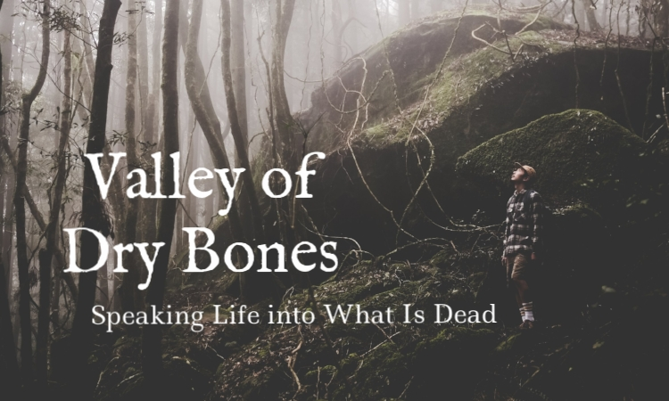 valley of dry bones speaking life into what is dead