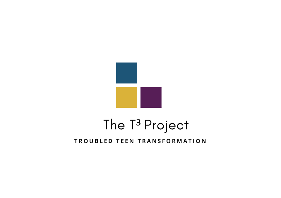 Transparent T3 Logo - Official.png