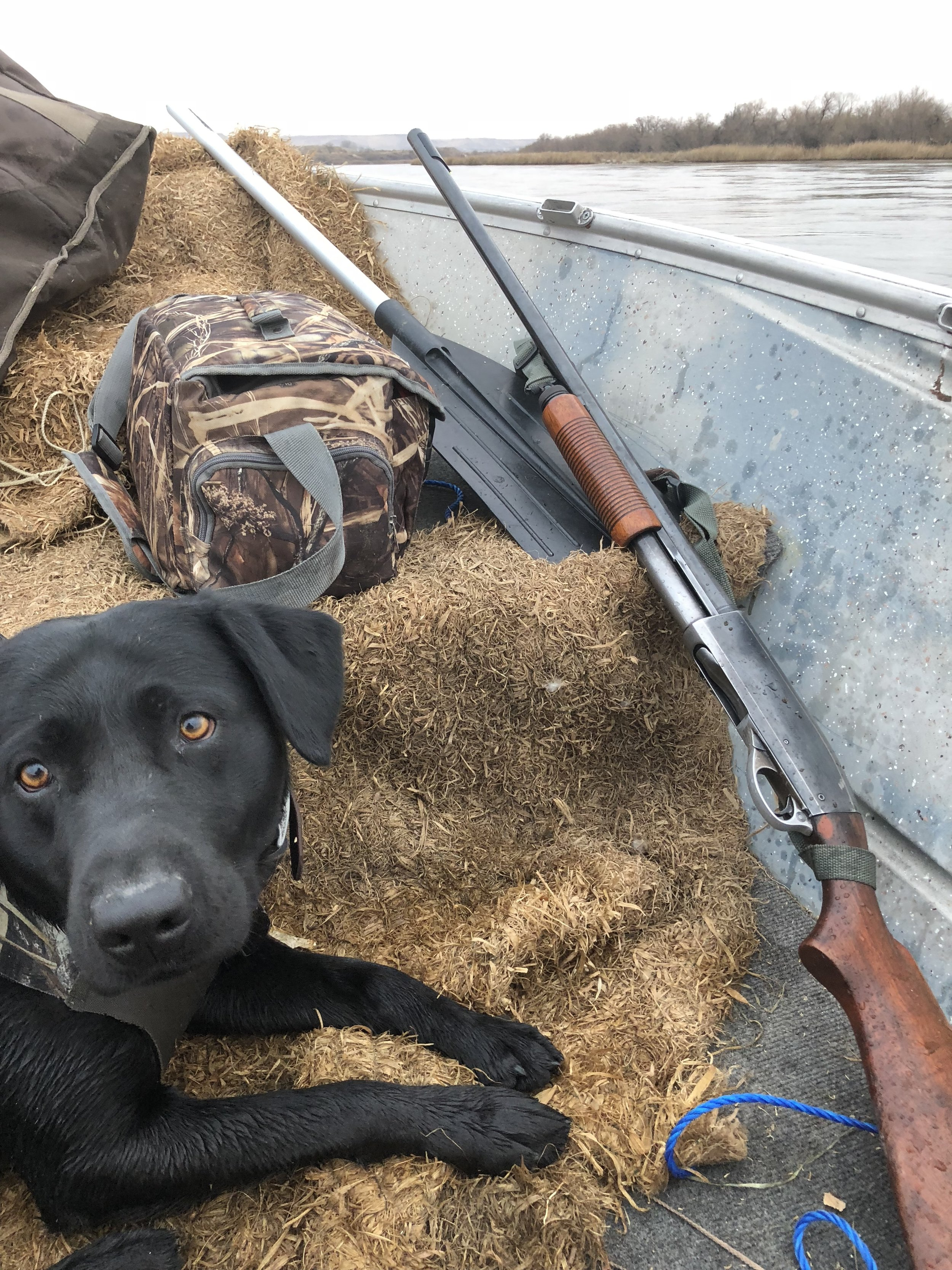 Tanker on the boat last season on a pretty bleak day of hunting. 2017 was a tough year for waterfowl hunting for sure. But we still managed to have some great days in the field!