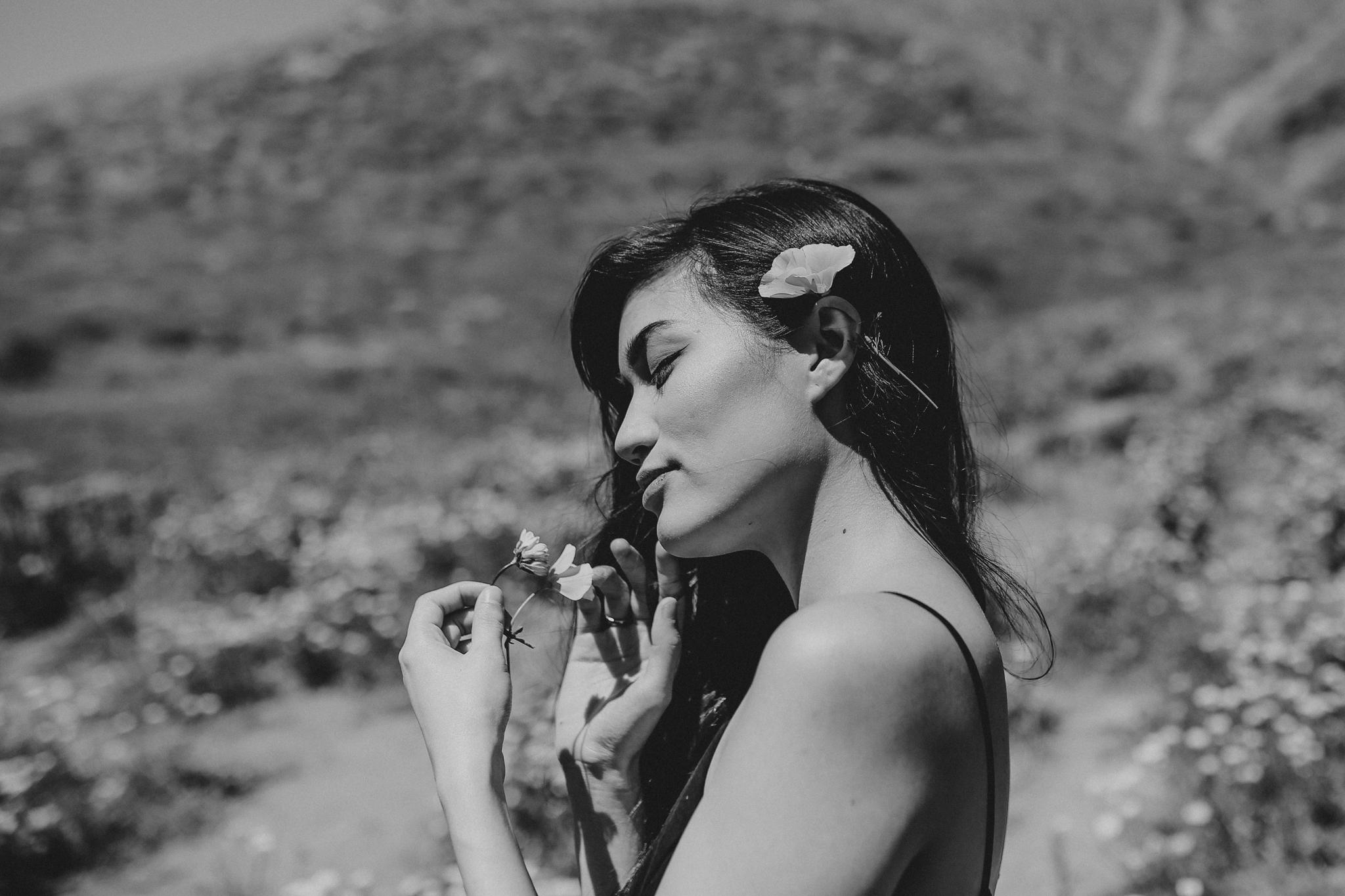Walker Canyon - Lola