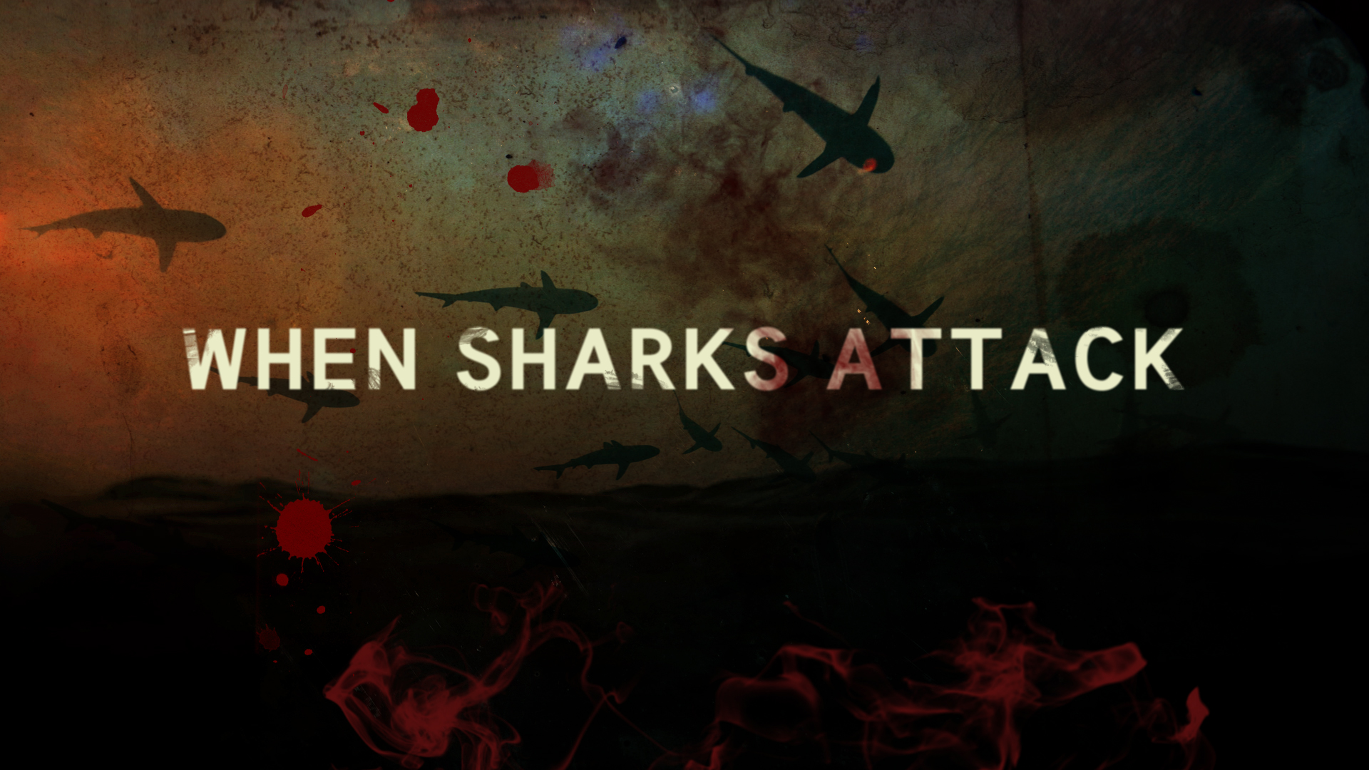 When Sharks Attack<br><br>Nat Geo WILD<br><i>2013-Present — 3 Seasons, 9 episodes</i>