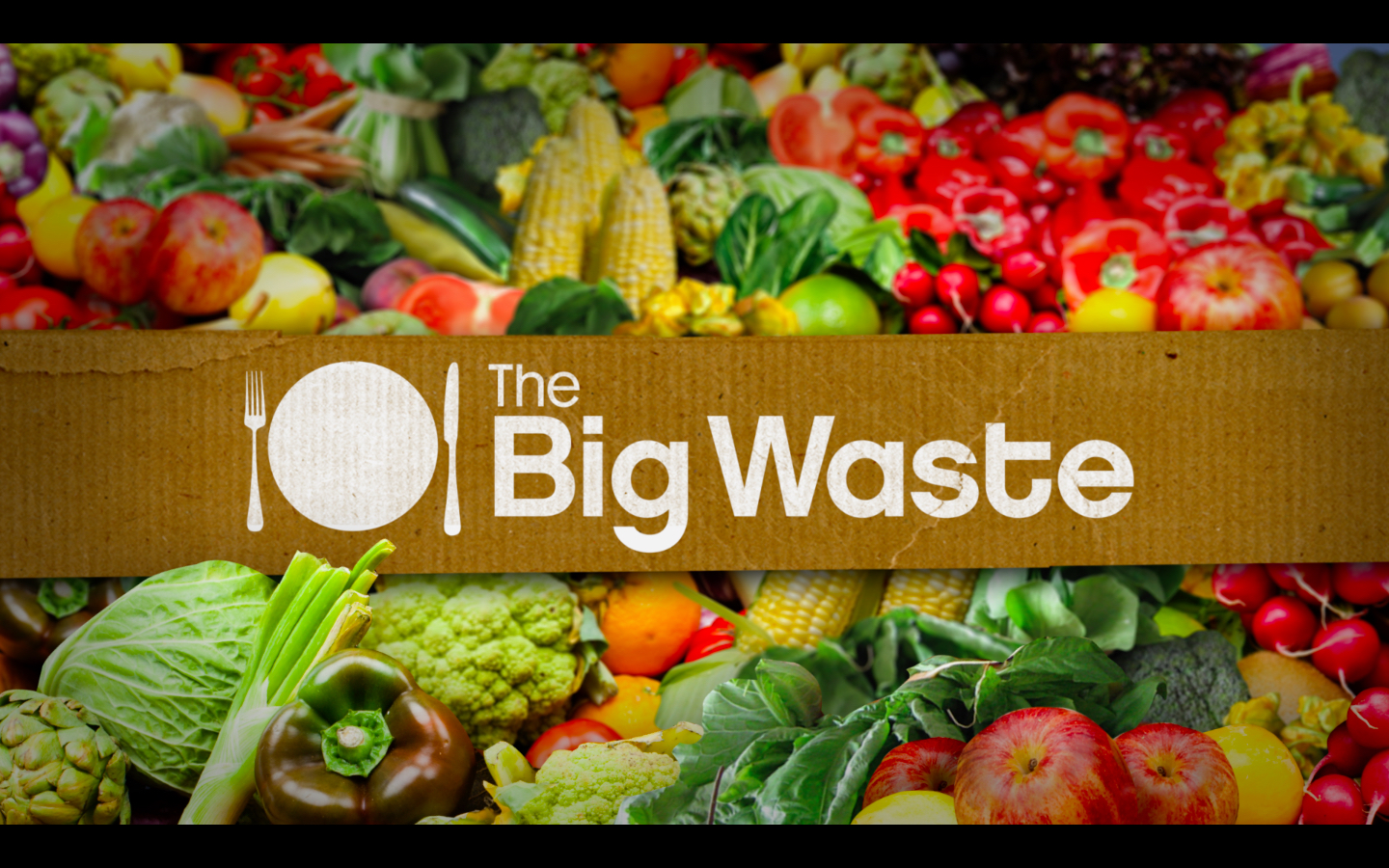 The Big Waste<br><br>Food Network<br><i>2012 — 1x Special</i>
