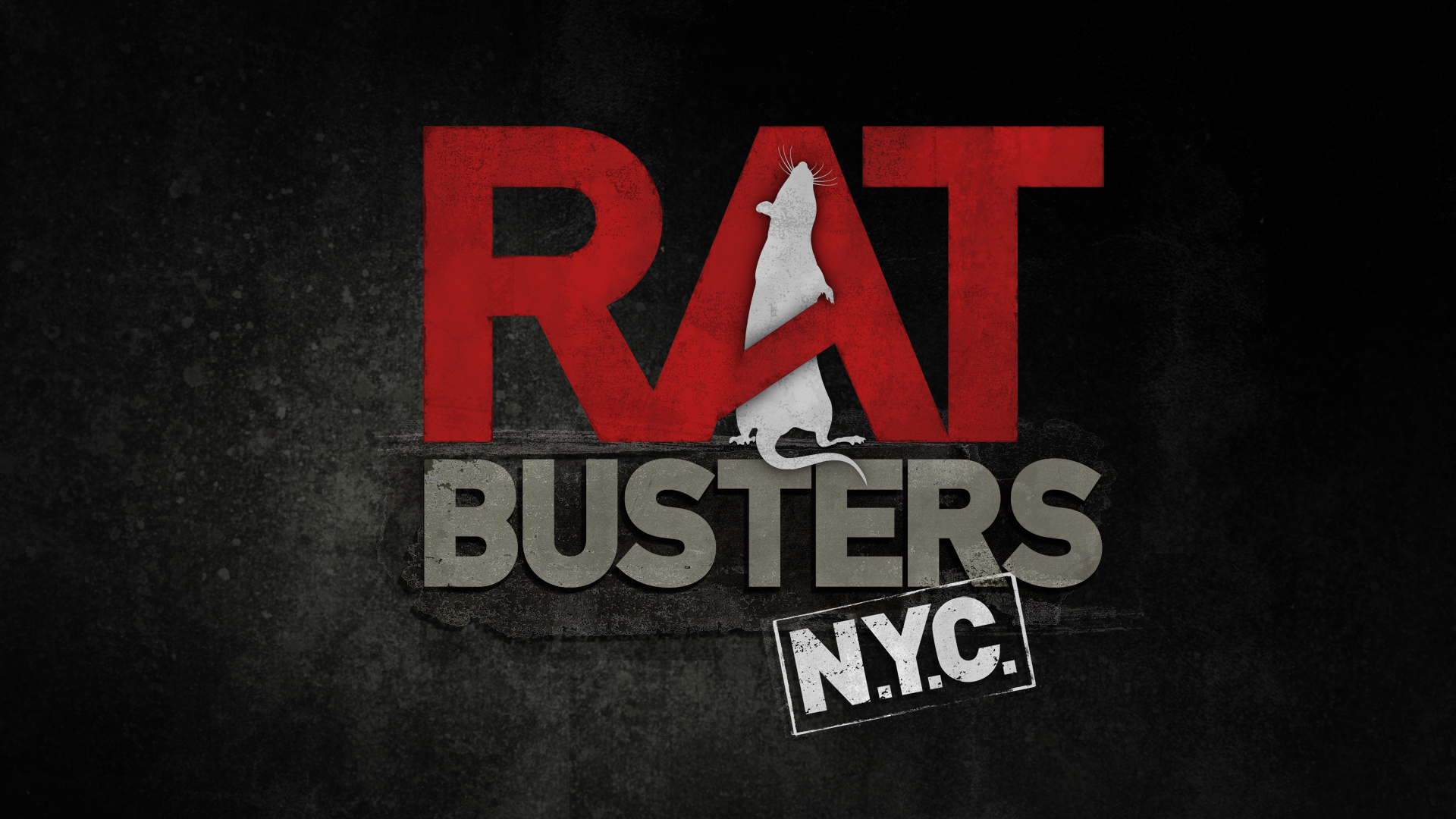 Rat Busters NYC<br><br>Animal Planet<br><i>2011 — 1 Season, 6 episodes</i>