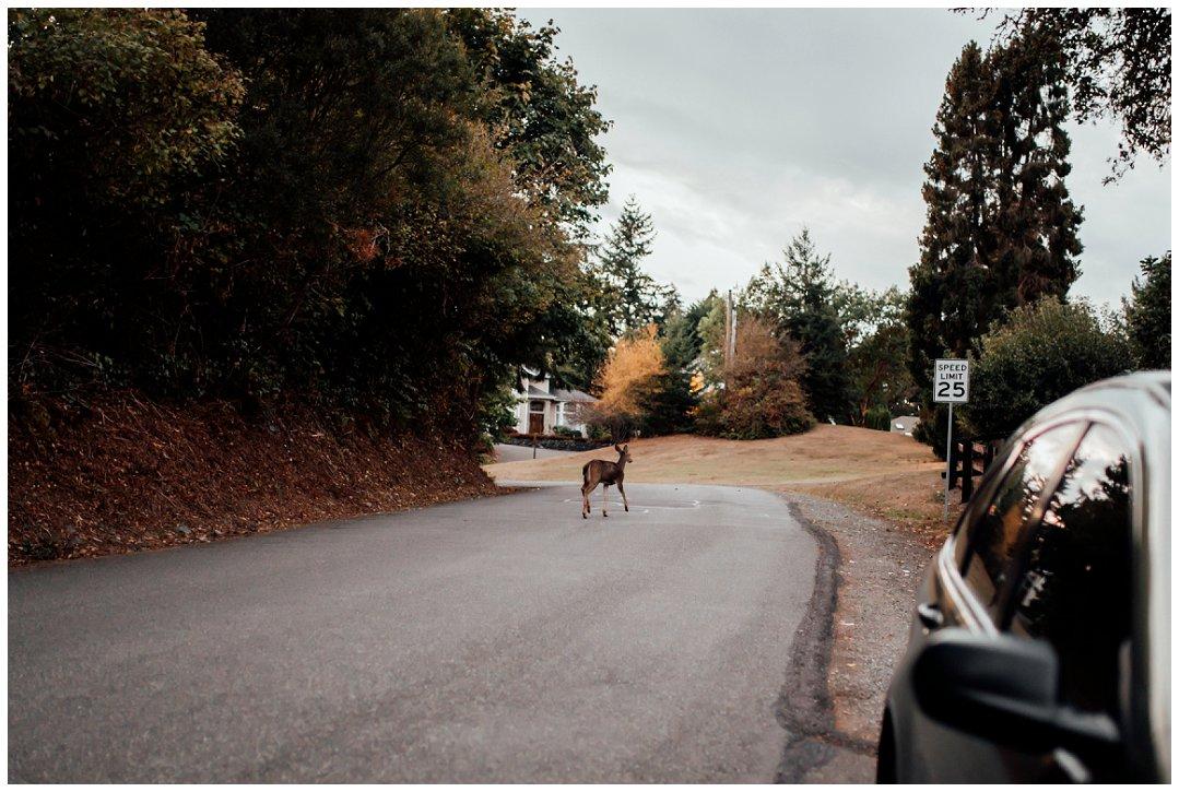 Tacoma_Washington_Fashion__Portrait_Photographer_Brittingham_Photography_0260.jpg
