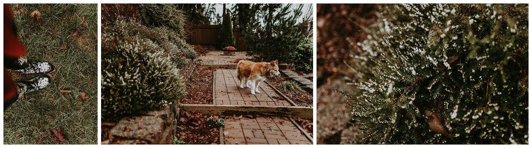 Orting_Washington_Natural_Light_Photographer_Brittingham_Photography_Gardening_Seniors_Couples_Newborns (2).jpg