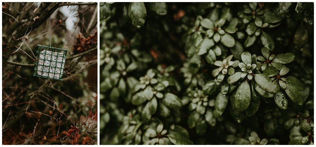 Orting_Washington_Natural_Light_Photographer_Brittingham_Photography_Gardening_Seniors_Couples_Newborns (11).jpg