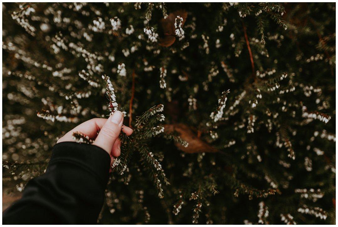 Orting_Washington_Natural_Light_Photographer_Brittingham_Photography_Gardening_Seniors_Couples_Newborns (12).jpg