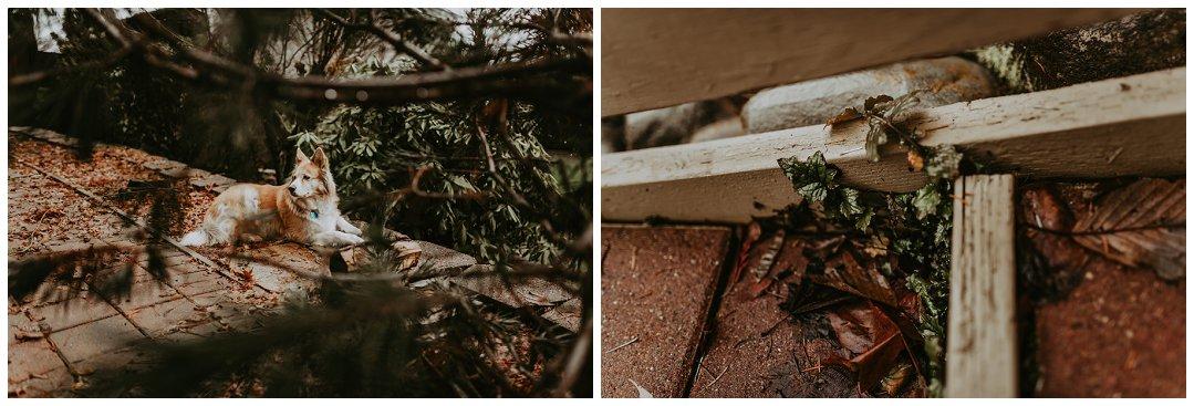 Orting_Washington_Natural_Light_Photographer_Brittingham_Photography_Gardening_Seniors_Couples_Newborns (13).jpg