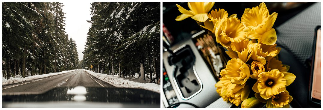 Brittingham_Photography_Orting_Washington_High_School_Senior_Photographer_Lucy_Malone_Daffodil_Princess_0001.jpg