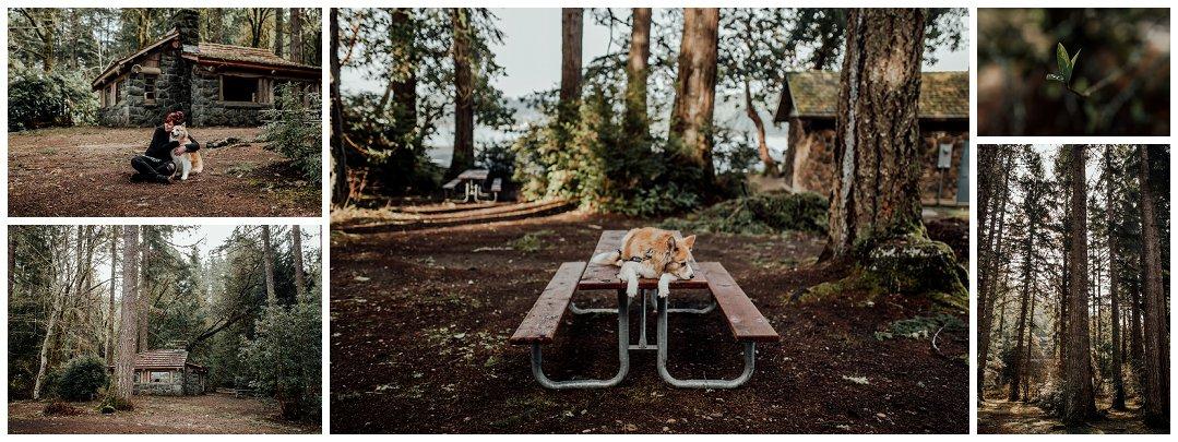 Brittingham_Photography_Seattle_to_Ireland_Roadtrip_Dunluce_Castle_Bushmills_Dark_Hedges_0028.jpg
