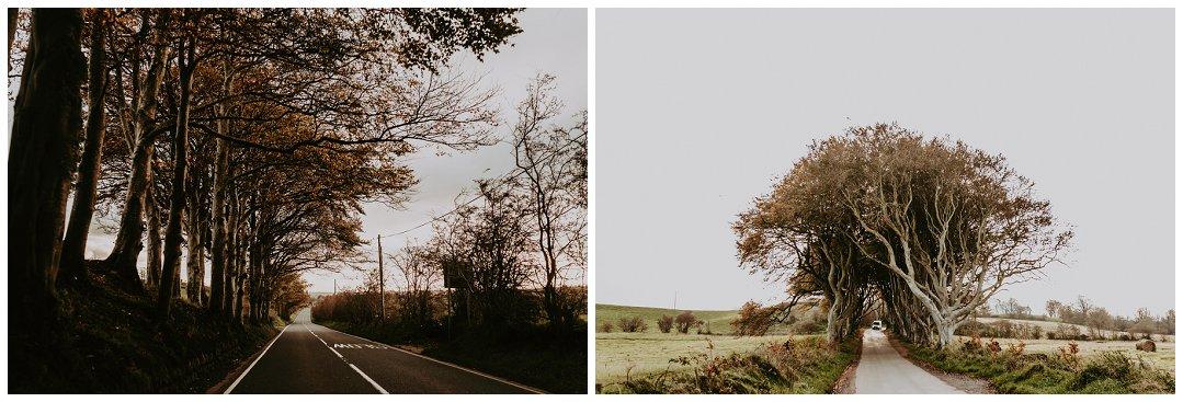 Brittingham_Photography_Seattle_to_Ireland_Roadtrip_Dunluce_Castle_Bushmills_Dark_Hedges_0001.jpg