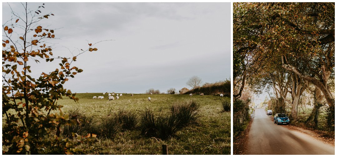 Brittingham_Photography_Seattle_to_Ireland_Roadtrip_Dunluce_Castle_Bushmills_Dark_Hedges_0003.jpg