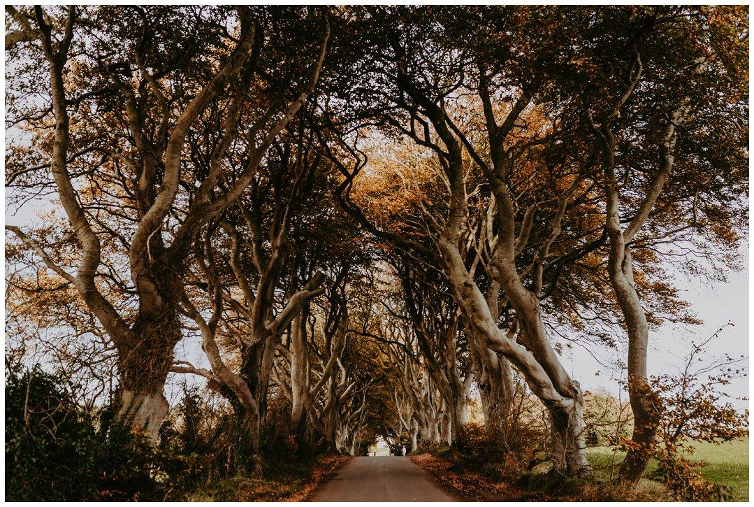 Brittingham_Photography_Seattle_to_Ireland_Roadtrip_Dunluce_Castle_Bushmills_Dark_Hedges_0004.jpg
