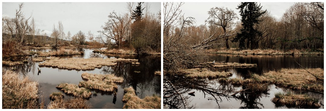 Brittingham_Photography_Orting_Natural_Light_Photographer_Nisqually_Wildlife_Preserve_Olympia_0014.jpg