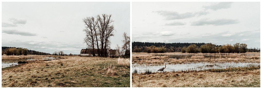 Brittingham_Photography_Orting_Natural_Light_Photographer_Nisqually_Wildlife_Preserve_Olympia_0041.jpg