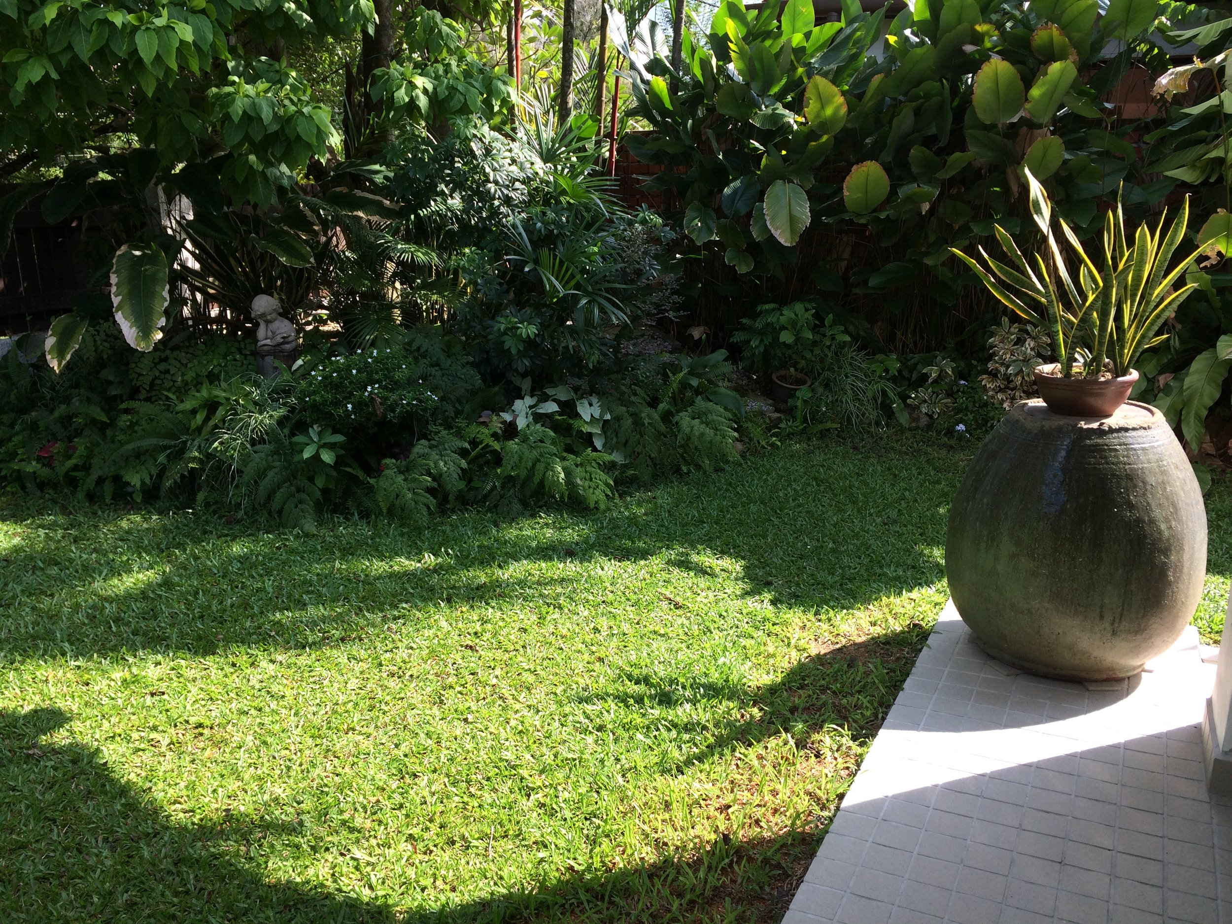 Feeling the Spirit of the Earth in the Garden (DayAnidhi Earth)