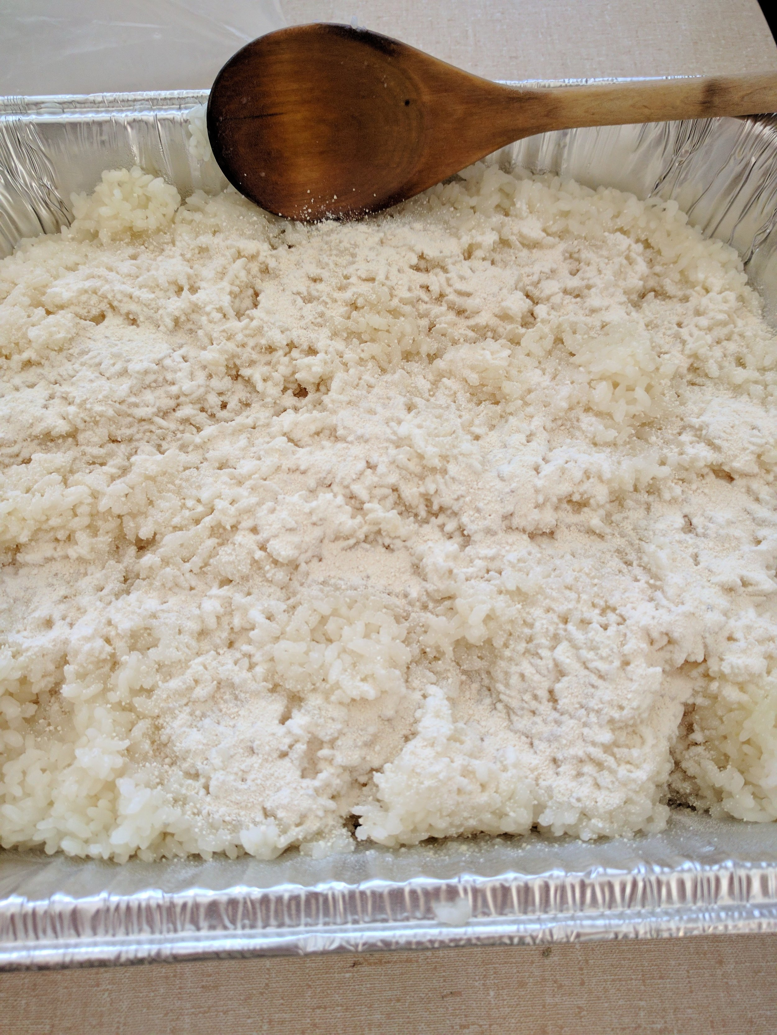 Yeast sprinkled into the  cooled  rice.