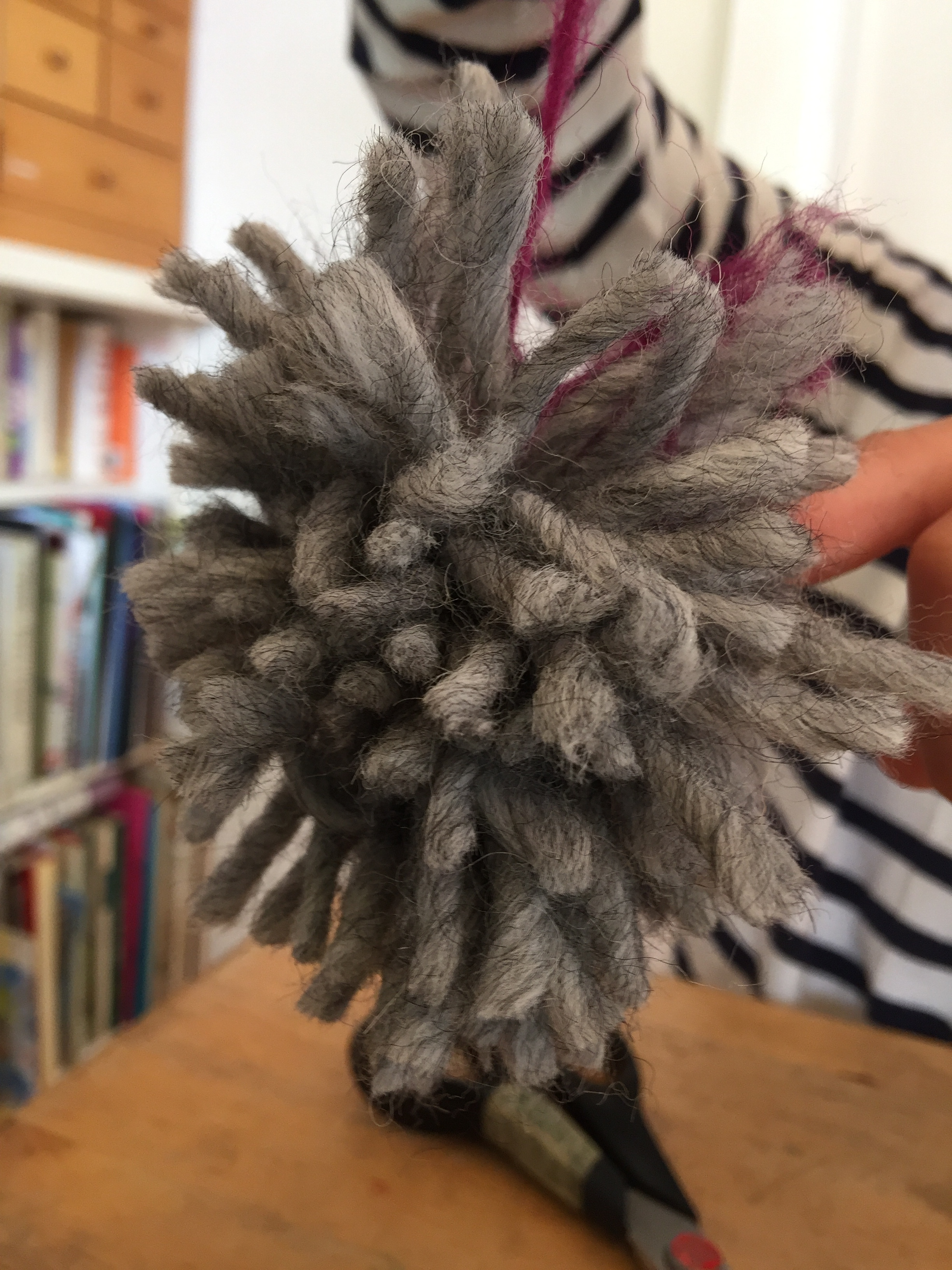 Here is our pom-pom once the loops were cut, looking rather shaggy.