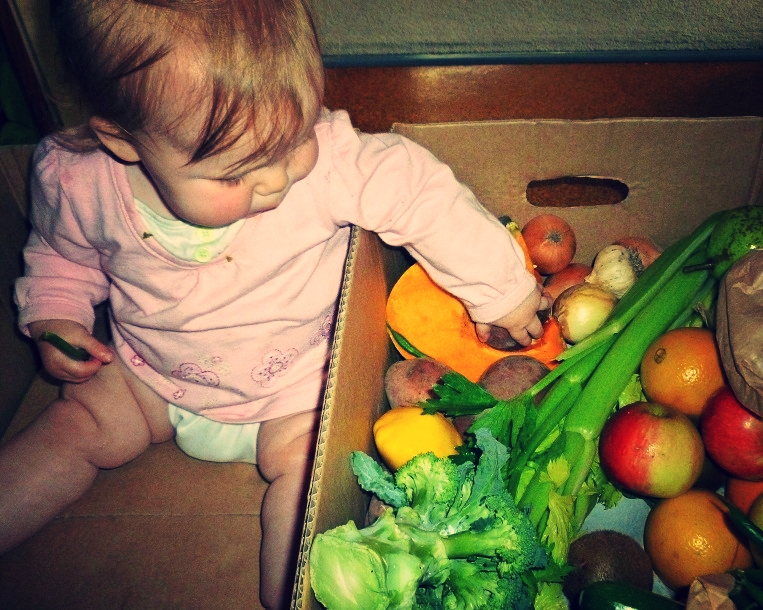 Order a seasonal vegetable box and let the kids open it and touch it all.
