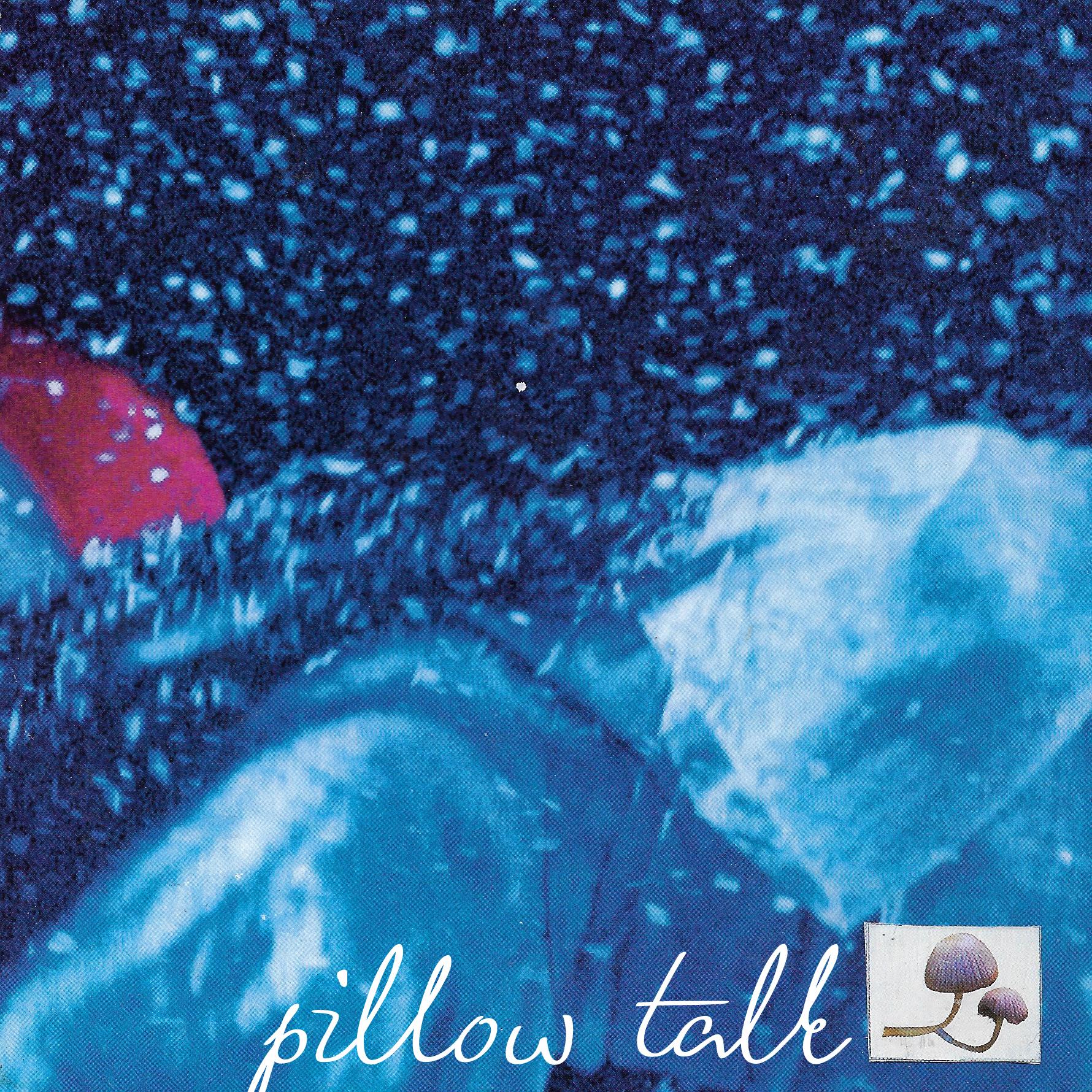 """""""PILLOW TALK"""" cover art"""