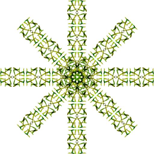 oc-green-1.jpg