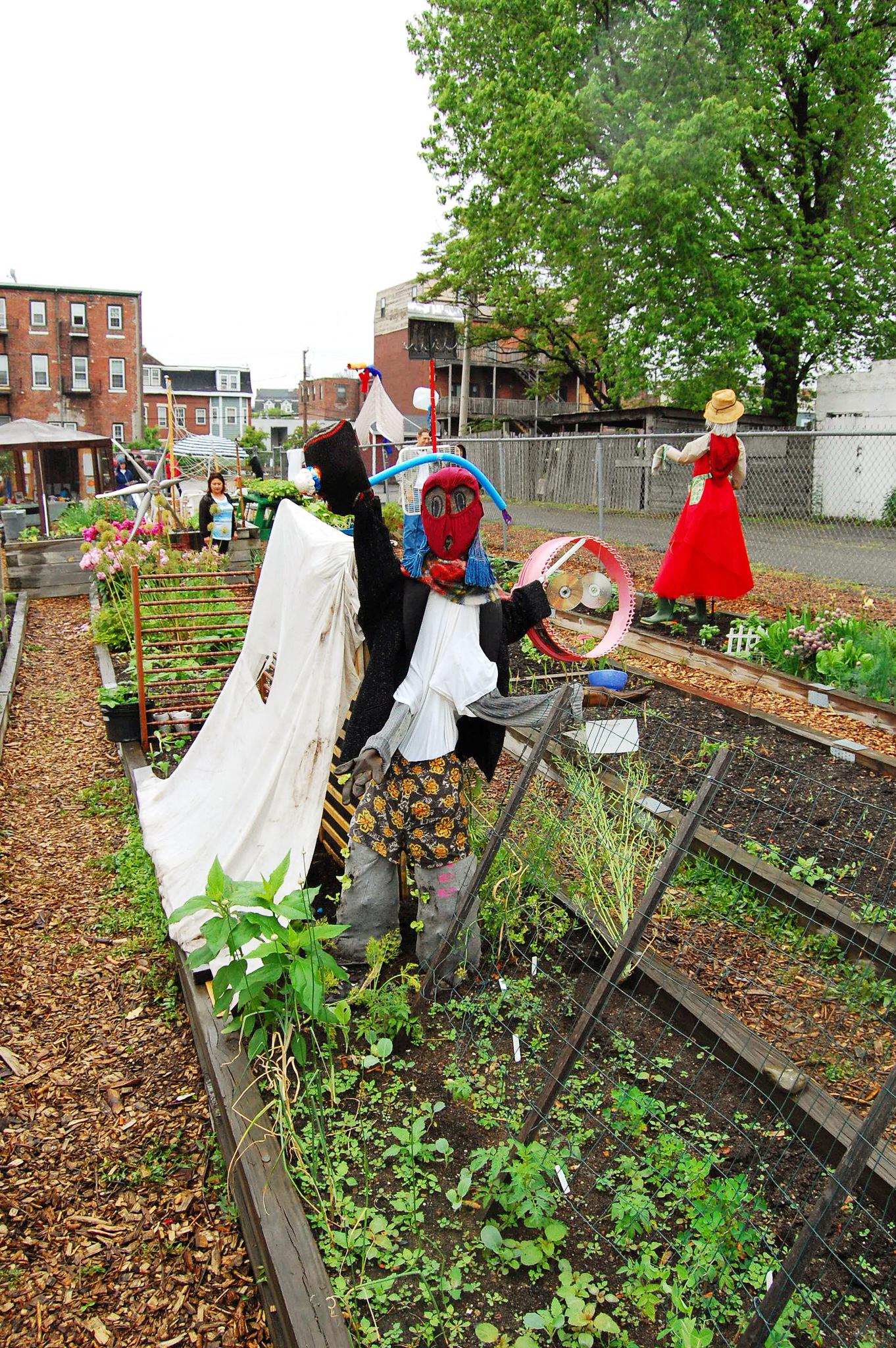 Garden scarecrow.jpg