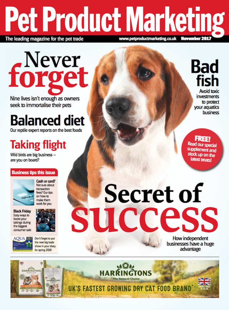 INSIDE THIS ISSUE  Wild thing – with sales are bird feed up, are you on board?  Toxic investments – can you spot a bad fish when you see it?  Success stories – small businesses have the edge. Here's why.
