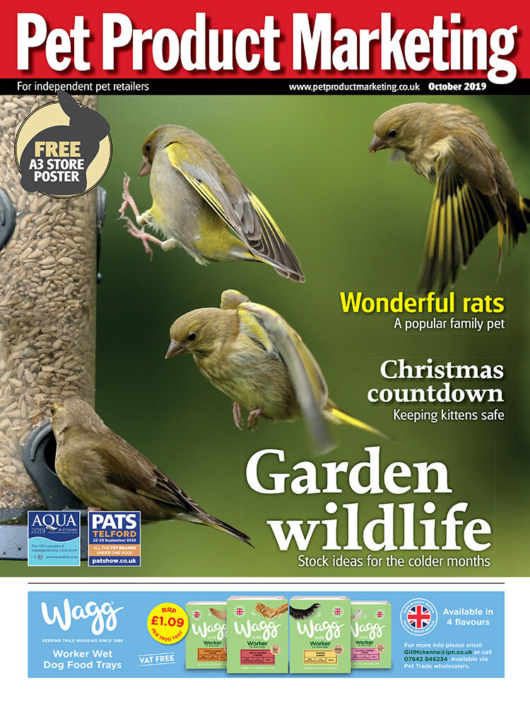 INSIDE THIS ISSUE:  The countdown to Christmas - festive tips to help keep kittens safe. 40 ways to get through winter. Do we underestimate our customers? Wonderful rats - rat retail opportunities are on the rise!