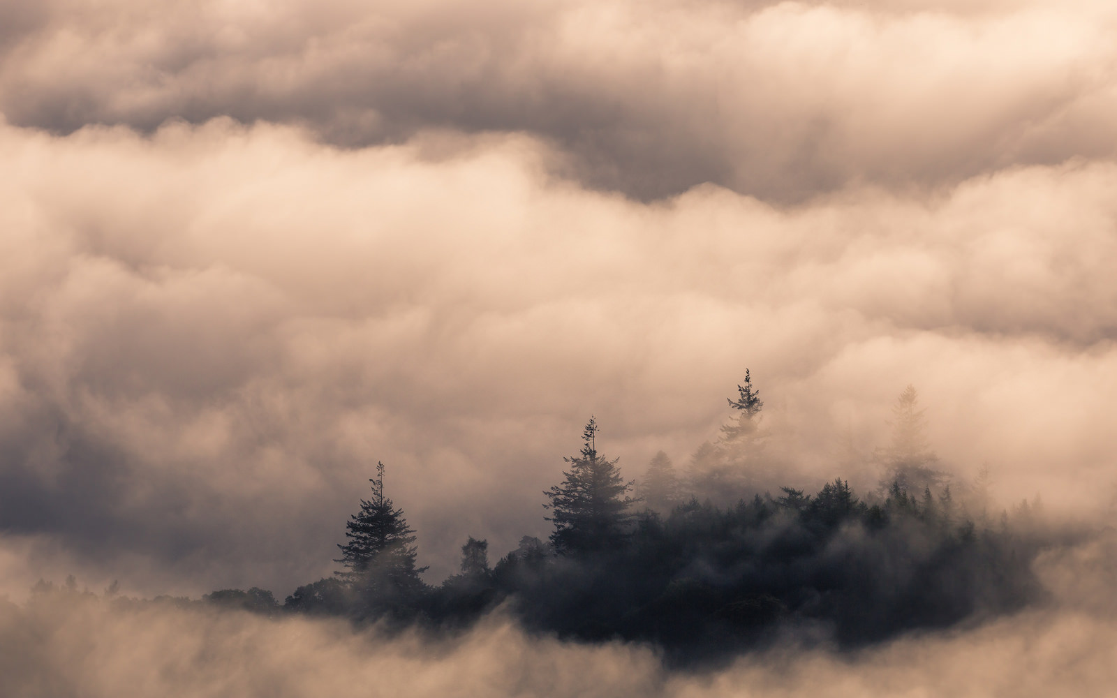 An island on Derwent Water looking sublime through the cloud