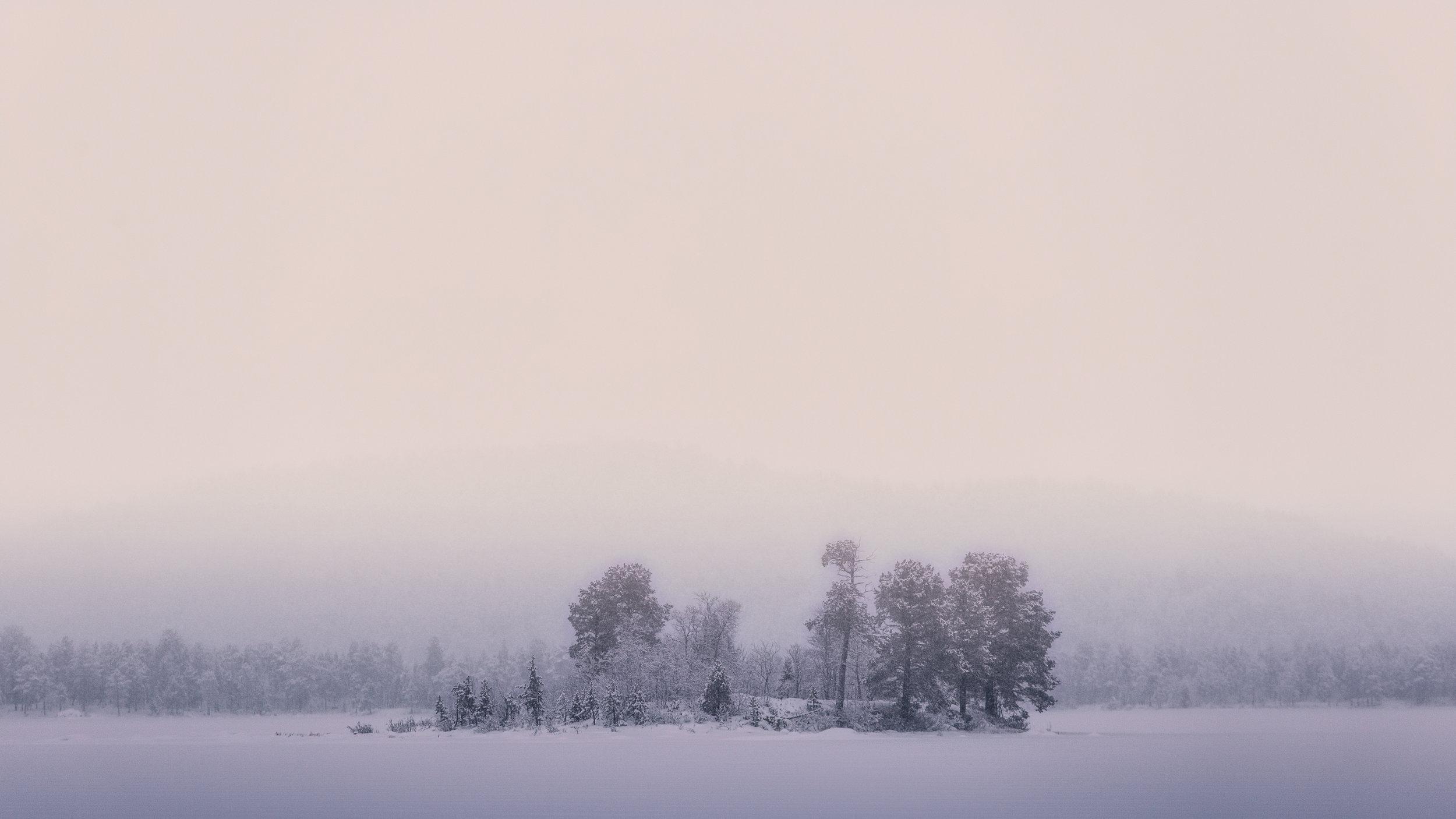 Under a veil of mist, the subtle tones of Polar night warm the landscape.