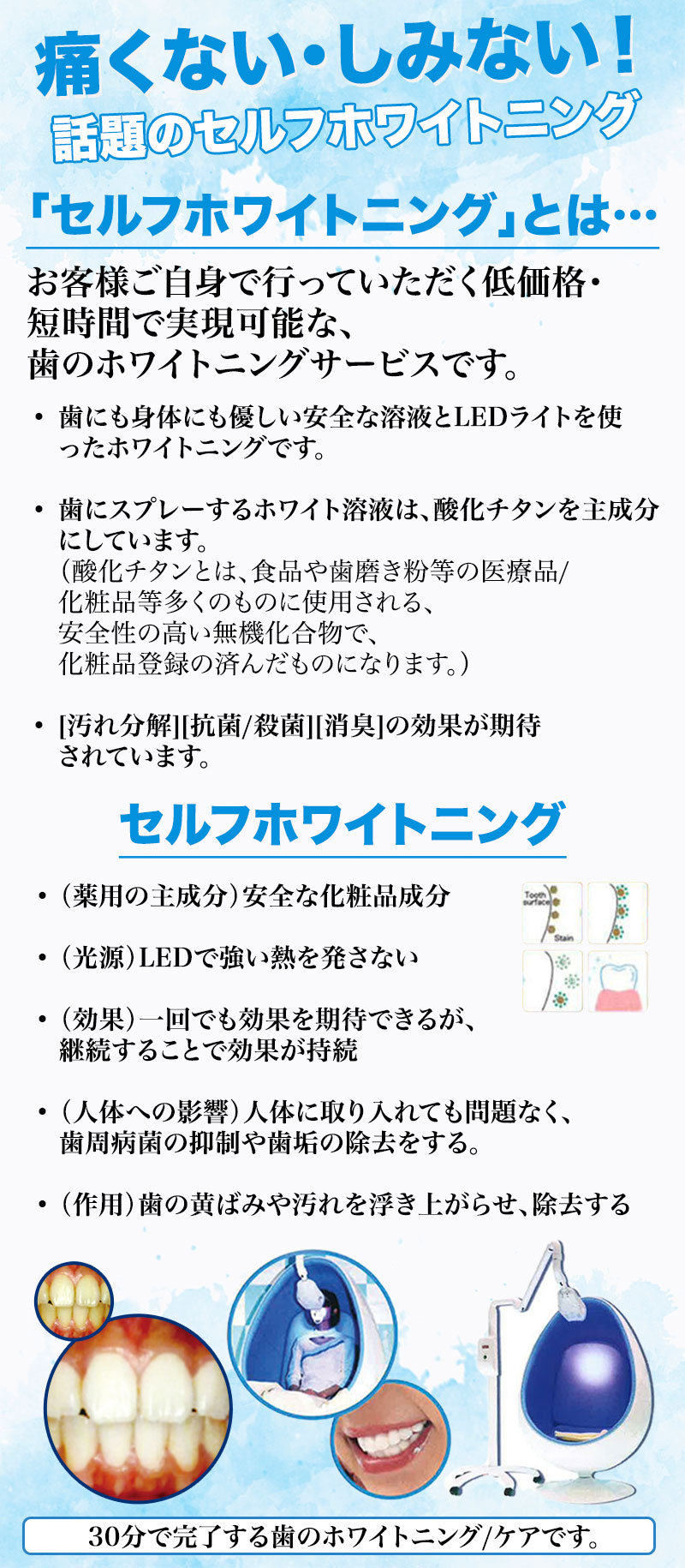 201905_Bihaku_JPWebsite_1.jpg