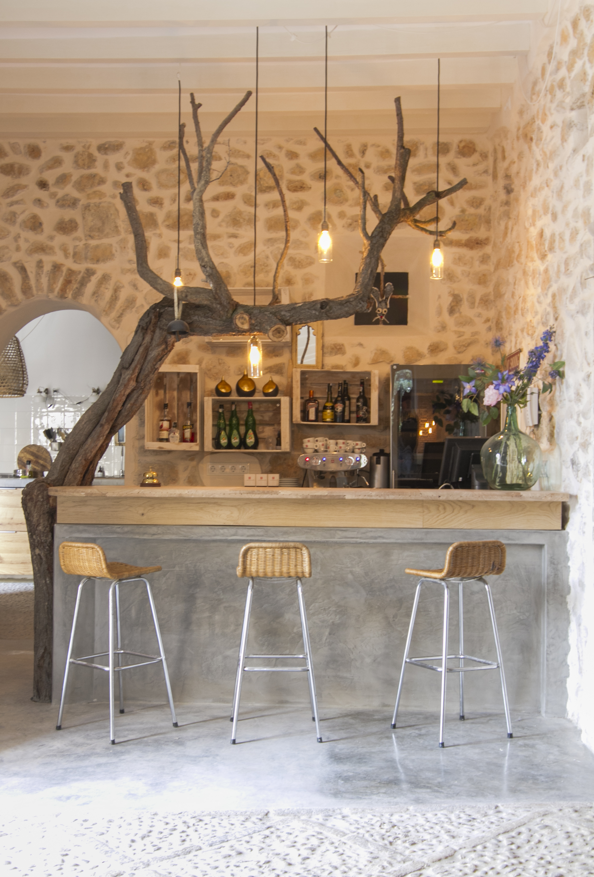 The pink pepper tree bar