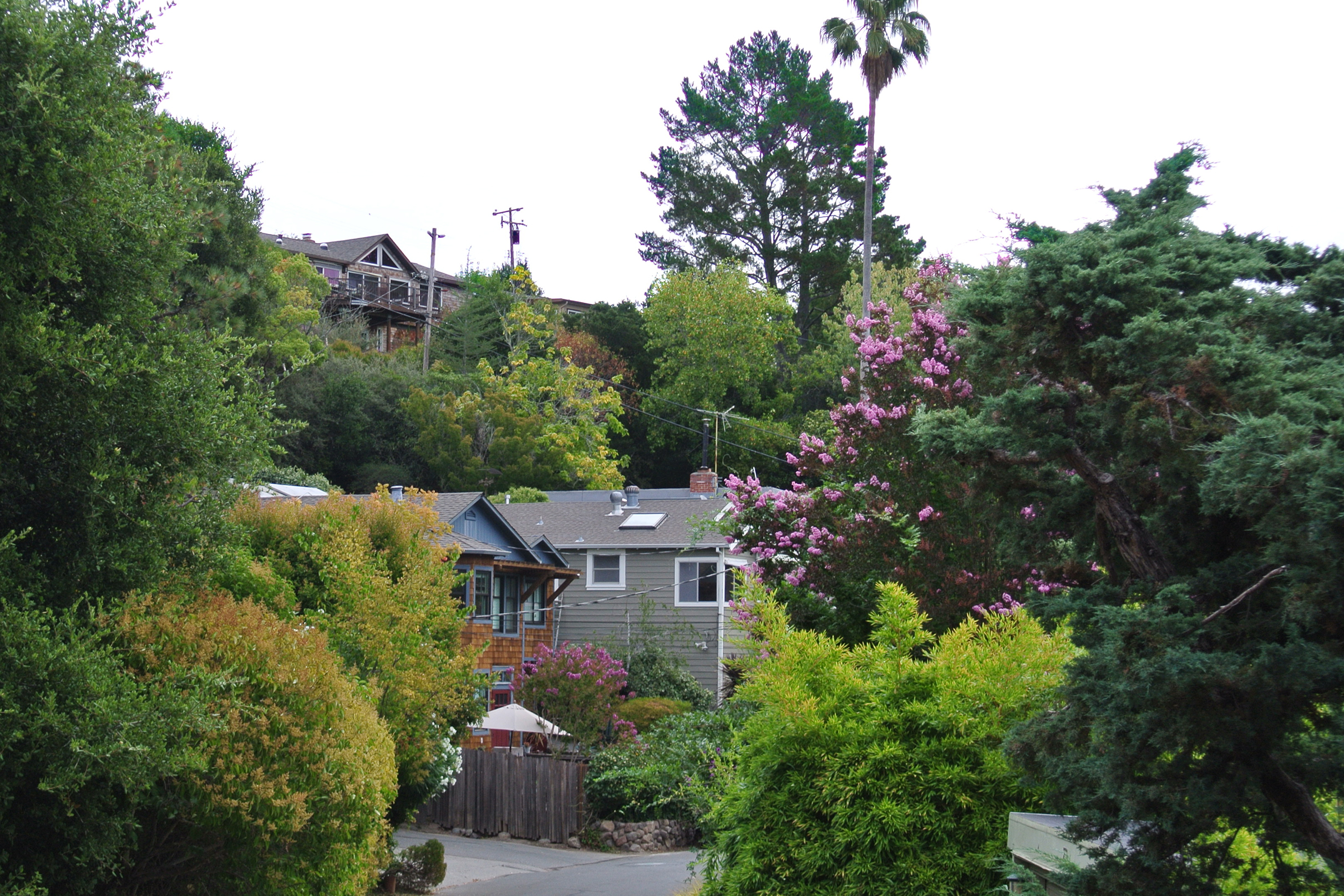 Charming little hilly streets with plenty of family atmosphere convenient to Fairfax.