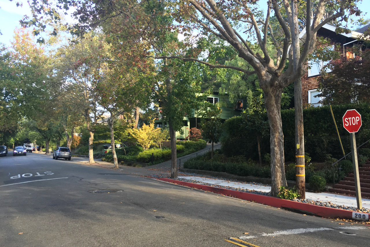 Super walkable to downtown San Rafael, but this family neighborhood retains a friendly peaceful vibe.