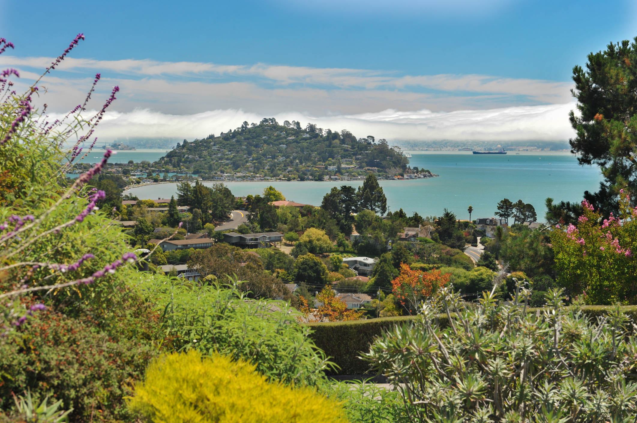 Wealthy peninsula community with jaw-dropping views and a buttoned-up, old-school California vibe.
