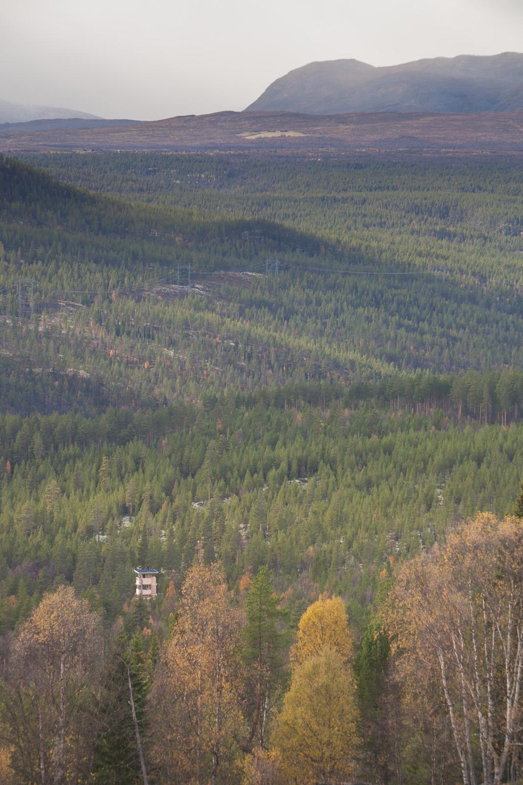 13066_160930_Elgtårn-0856-WEB.jpg