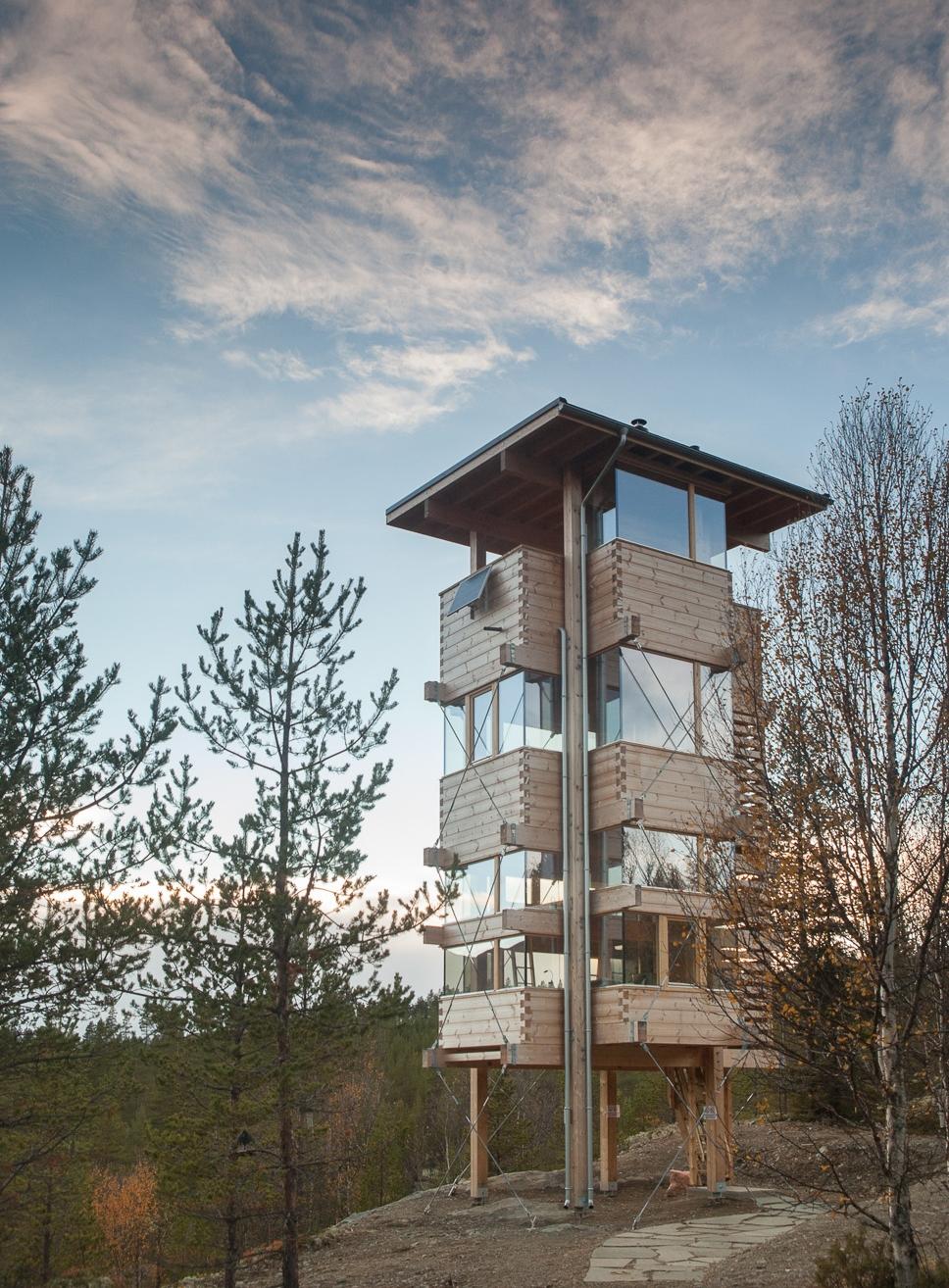 Elgtårnet i Espedalen, 2016