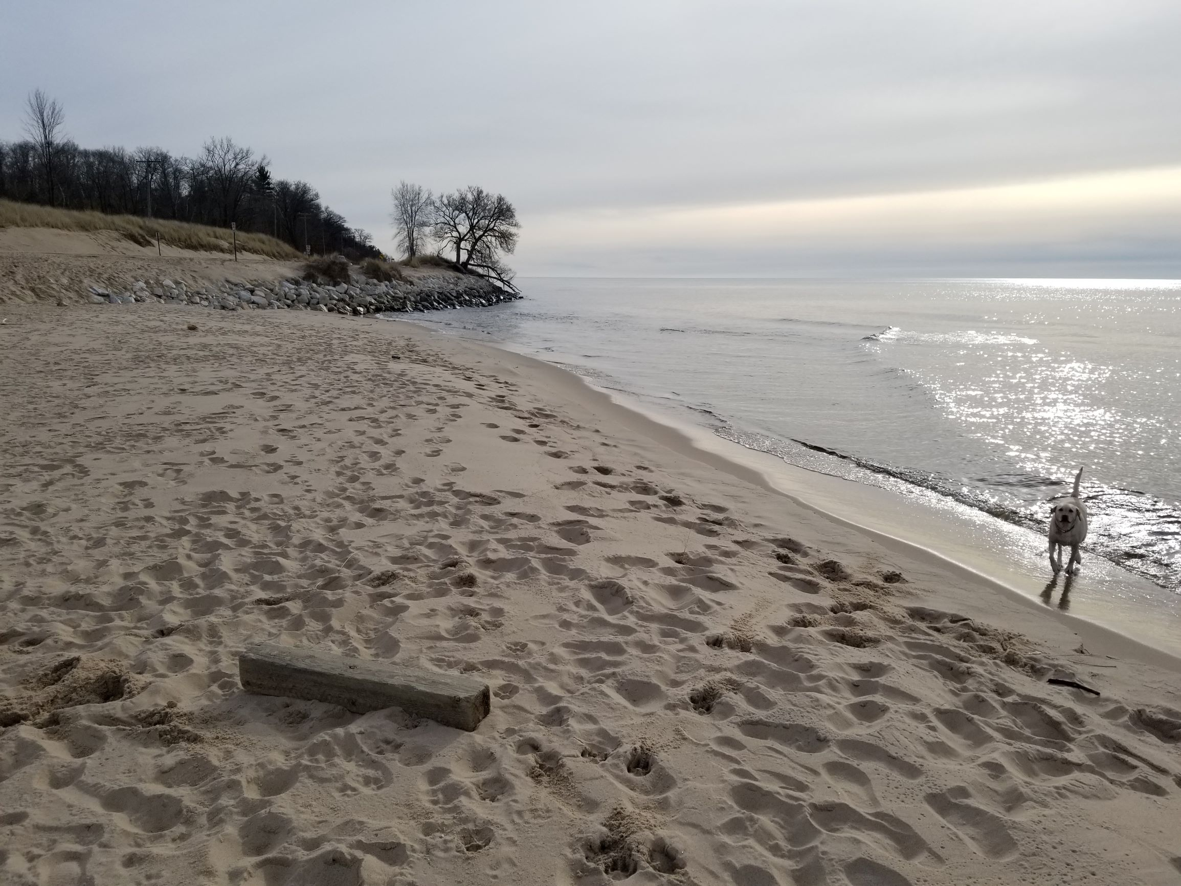 Beach Runnin'