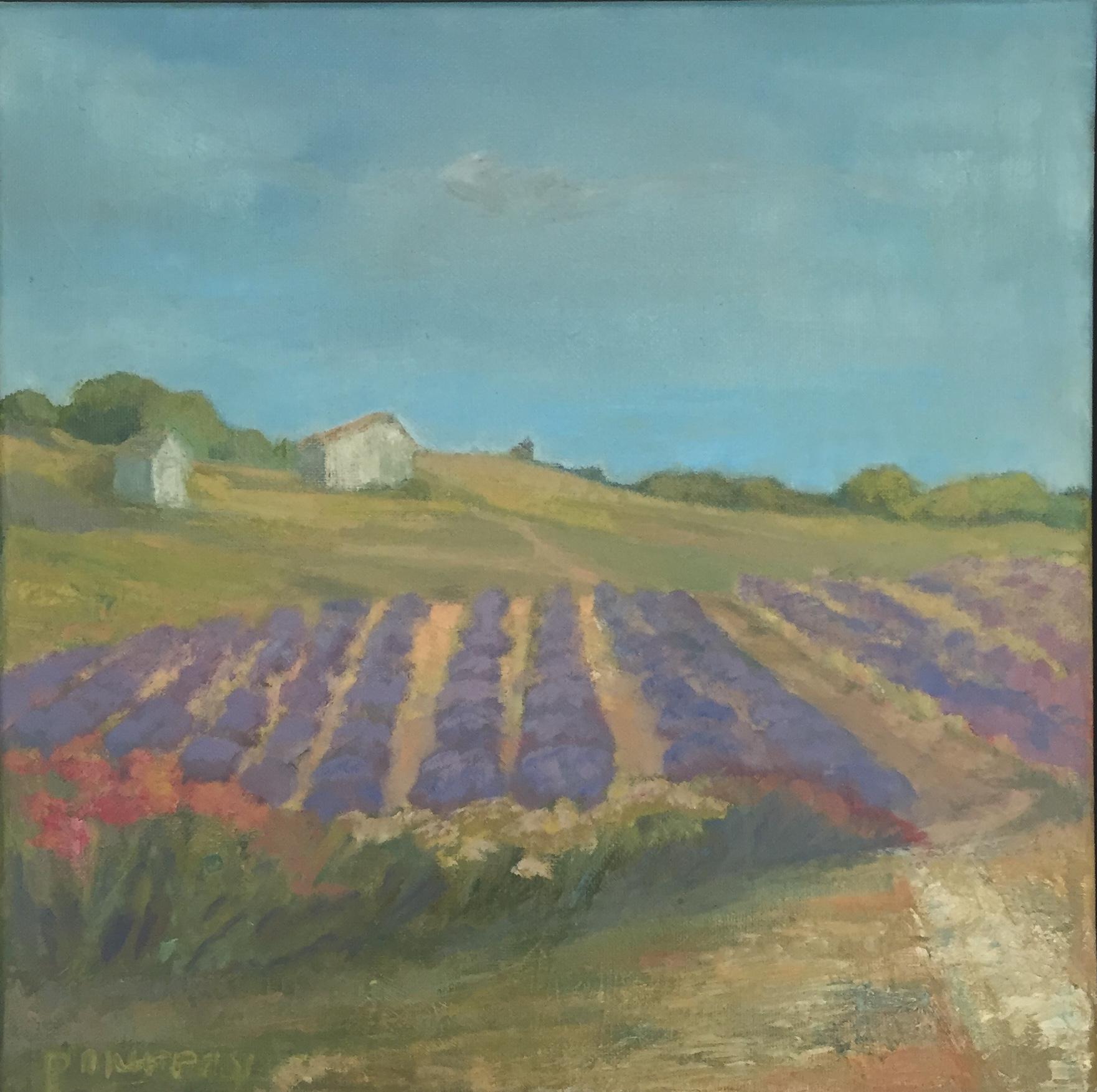 Lavender Farm, Provence